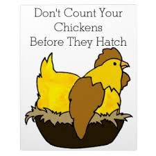 Don Count The Chicken Before They Hatch Count Your Chickens Gifts On Zazzle
