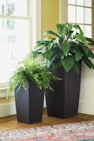 Modern Indoor Planters Indoor Plant Pots House Plant Container House Plant Pots Indoor