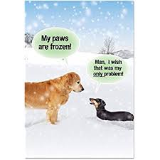 amazon com hallmark shoebox funny christmas greeting card