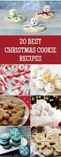 215 best cookies images on pinterest decorated cookies dessert