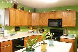 green kitchen paint ideas astonishing our kitchen before green paint callumskitchen