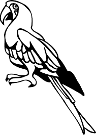 printable parrot coloring pages kids coloring point