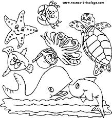 animaux marins 26 animaux u2013 coloriages à imprimer
