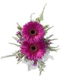 Flowers And Gift Baskets Delivery - royer u0027s flowers u0026 gifts gallery flowers plants gift basket