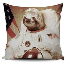 Astronaut Sloth Meme - astronaut sloth meme pillows pinterest sloth astronauts and meme