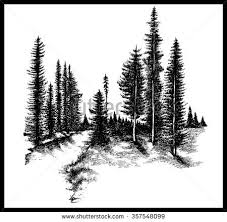 mountain forest pine trees river stock vector 357548099