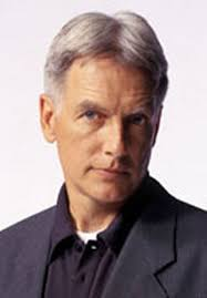 whats the gibbs haircut about in ncis 1579 best ncis images on pinterest mark harmon celebs and belly