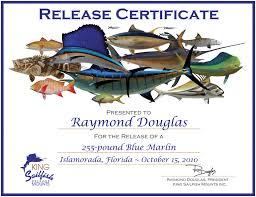 mako shark mounts by king sailfish mounts