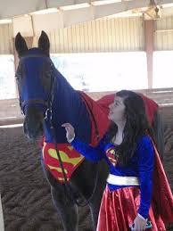 best 25 horse fancy dress costume ideas on pinterest horse
