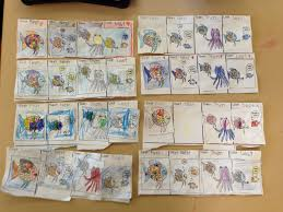 maths hsie rainbow fish sequencing good quality