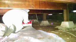 Crawl Space Cleaning San Francisco San Jose Craw Space Clean Up Peninsula Projects Dryfast