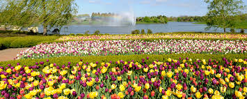 Chicago Botanic Garden Membership Do Chicago Botanic Garden