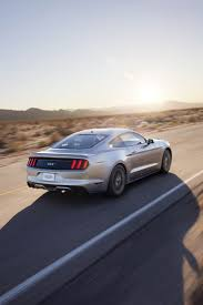 2015 Mustang Gt500 Shelby Best 25 2015 Ford Mustang Ideas On Pinterest Ford Shelby 2015