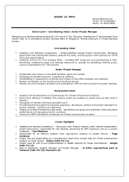 Sample Resume Investment Banking by Resume For Business Analyst In Banking Domain Dot Net Developer