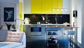 couleur de carrelage pour cuisine quelle couleur pour une cuisine blanche maison design bahbe com