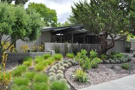 Modern Front Yard Desert Landscaping With Palm Tree And Front Yard Landscaping Ideas Xeriscape Pdf Amazing Homes Design