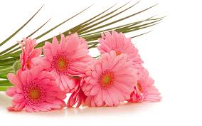 flower bouquet pictures flower bouquets images and wallpapers