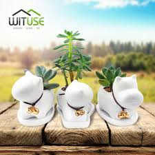 Small Plants For Office Desk by Online Shop Wituse Animal Puppy Small Pots Mini Potted Succulents