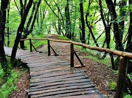 plitvice lakes one of the best national parks in the world