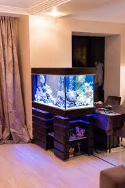 2894 best aquarium ideas images on pinterest aquariums fish