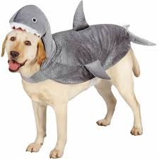 Halloween Costume Dog Halloween Dog Costume Ideas 32 Easy Cute Costumes