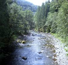 Oregon rivers images Salmon river clackamas county oregon wikipedia jpeg