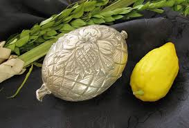 meaning of thanksgiving holiday sukkot wikipedia