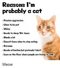 Passive Aggressive Meme - reasons i m probably a cat passive aggressive likes to be pet