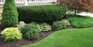 Front Lawn Landscaping Ideas Front Yard Landscaping Ideas Pictures Chester Berks And