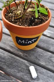 Herb Garden Pot Ideas Painted Mini Herb Garden Pots