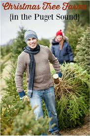 find a u cut christmas tree farm in puget sound