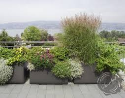 extra large outdoor planters planters rooftop google search urban deck gradens pinterest