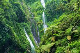 madakaripura waterfall deep forest waterfall in east java
