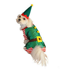 Elf Costume Halloween Big Dog Costumes Costumes Large Dogs Xxl 3xl 4xl Dog