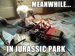 Jurassic Park Birthday Meme - meanwhile in jurassic park meme on imgur