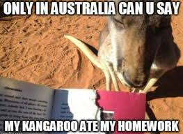 Kangaroo Meme - thanks kangaroo meme by a person34 memedroid