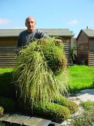 Horse Topiary Topiary Art Designs Topiarydesigns Twitter