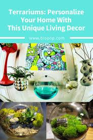 terrariums personalize your home with this unique living decor