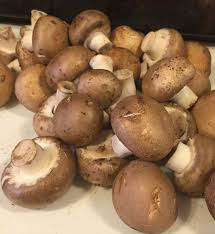 How To Create A Countrified Countrified Hicks Dehydrating Mushrooms Powder