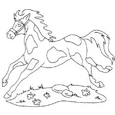 coloriage zorro cheval