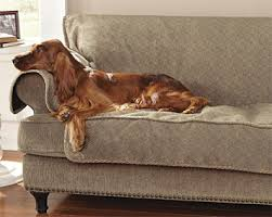 Dog Settee Sofa We Could Use This For Sure Sofa Covers Grip Tight Furniture