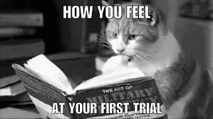 Lawyer Cat Meme - lawyer memes home facebook