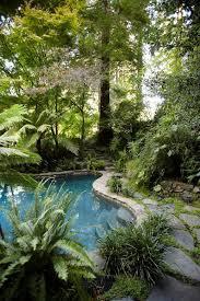 Tropical Backyard Ideas Triyae Com U003d Jungle Backyard Ideas Various Design Inspiration