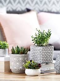 28 fresh coffee table decorating ideas with plants home123