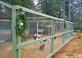 Backyard Chicken Run by Building A Predator Proof Chicken Run Fresh Eggs Daily Bloglovin U0027