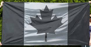 Canadian Flag Patch Large Subdued Canadian Flag Vexillology