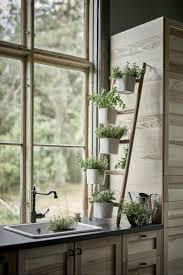 Kitchen Herb by Grow Kitchen Herb Garden Latest Home Decor And Design