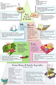 food pyramid during pregnancy u003e u003e u003e you can find out more details at
