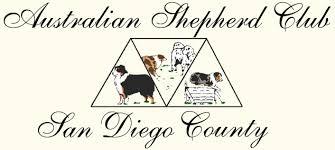 australian shepherd orange county australian shepherd club of san diego county