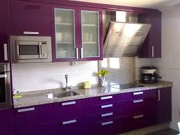 purple kitchens purple kitchen omg i love this kitchen ideas pinterest